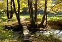 Stupavský potok
