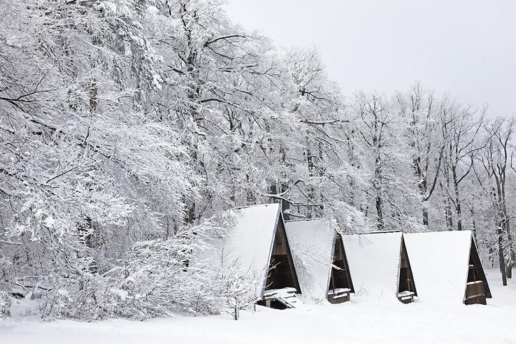 Bratislavská zima A.D. 2013