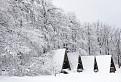 Bratislavská zima A.D. 2013 / 1.1000