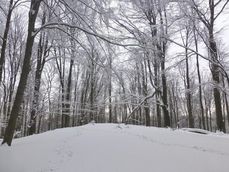 zima na Krkavom buku