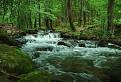 potôčik, potok, rieka...