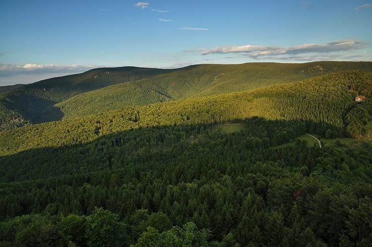 Hory lesy Vtáčnika