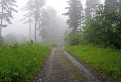 cesta rajom