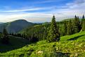 Zelené údolie