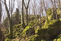 Kamenna zaba - Cajkovske bralie