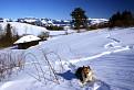 Snehu v Tatrách napadlo až po bradu