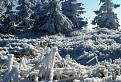 Zima na Kojšovskej holi
