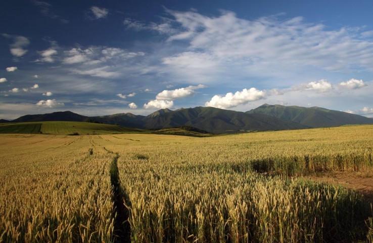 Zapadne Tatry od Tatralandie