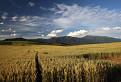 Zapadne Tatry od Tatralandie / bez hodnotenia