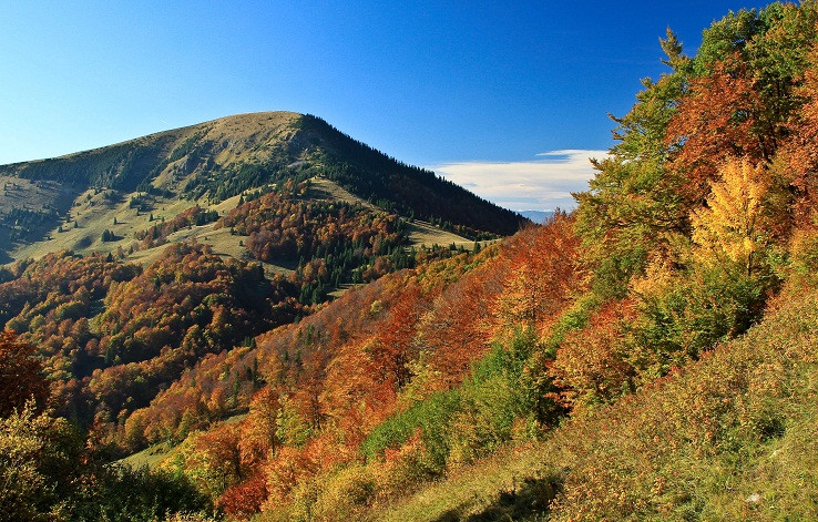 Veľkofatranské jesenné impresie VI