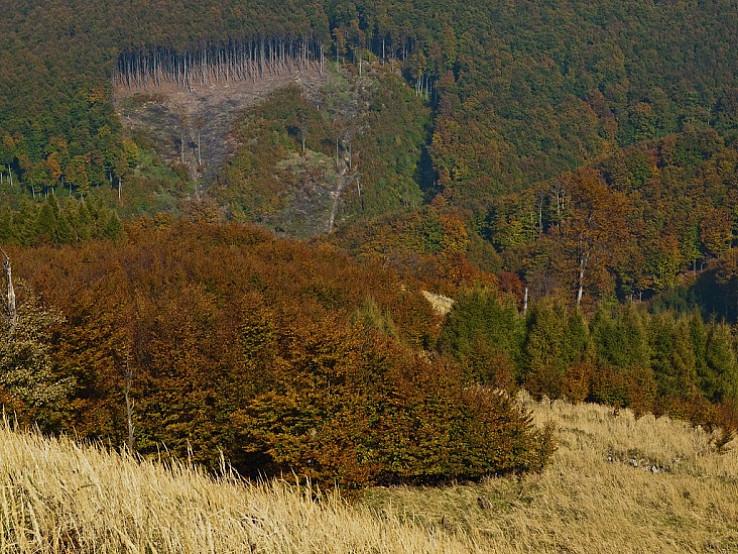 Karpatské pastely II