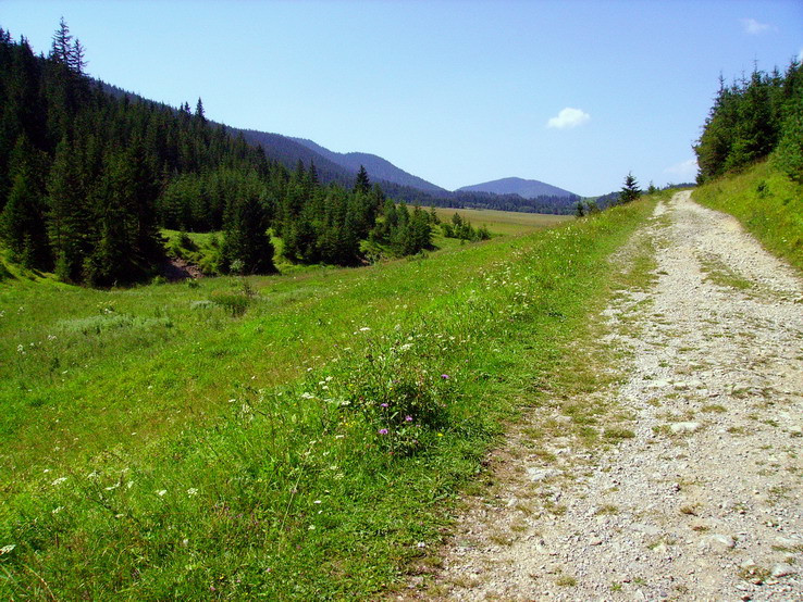 Cesta do neba