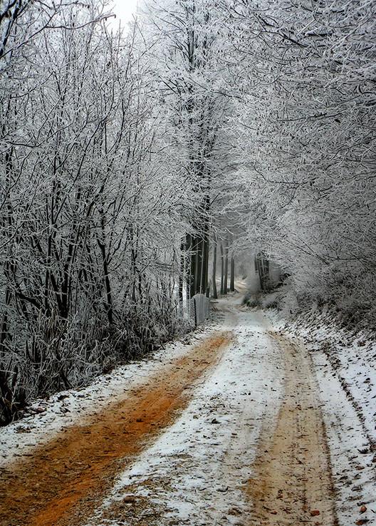 Biela cesta