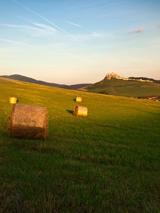Pohlad na Spišský hrad