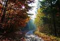 Jesenným chodníčkom