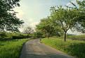 Cesta do Vydrníka