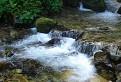 Roháčsky potok