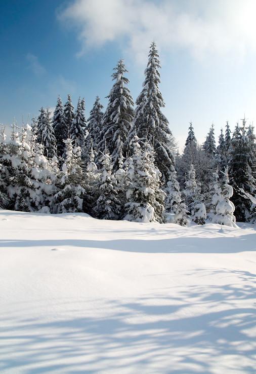 Kysucká zima