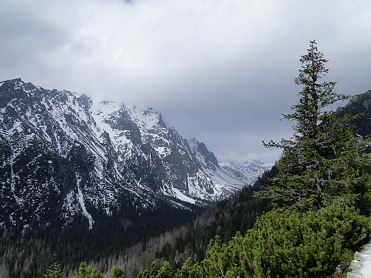Studená dolina