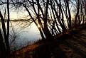 Dunajské zátišie