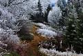 Jeseň vs. zima II