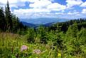 Dolina Hronec a Nízke Tatry