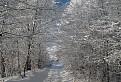 Zimná cesta / 1.0345