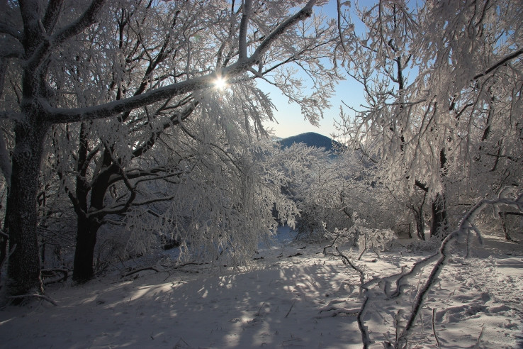 Záruby a zima