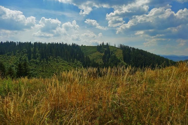 Hreben Zamciska