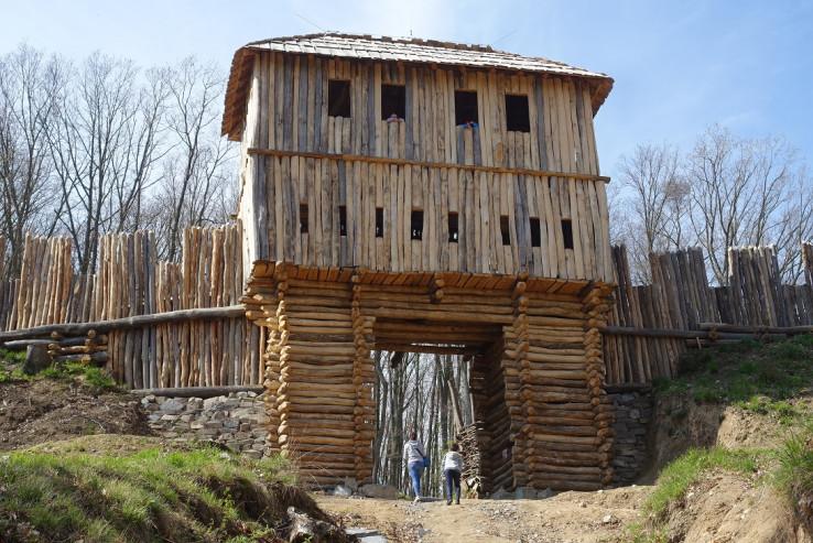 Východná brána hradiska Bojná I Valy