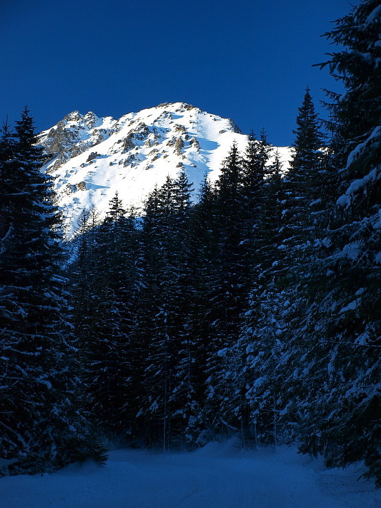 Temným lesom k svetlej hore.