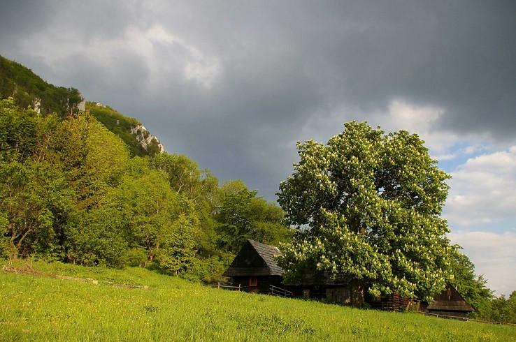 Osada Podšíp