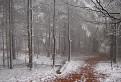 Snehové prekvapenie pod Havraňou skalou
