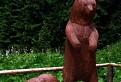 Pozor na medvede