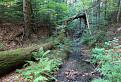 Prírodná rezervácia Udava