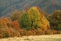 V jesenných farbách / 1.3125