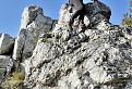 Kočky na skalách