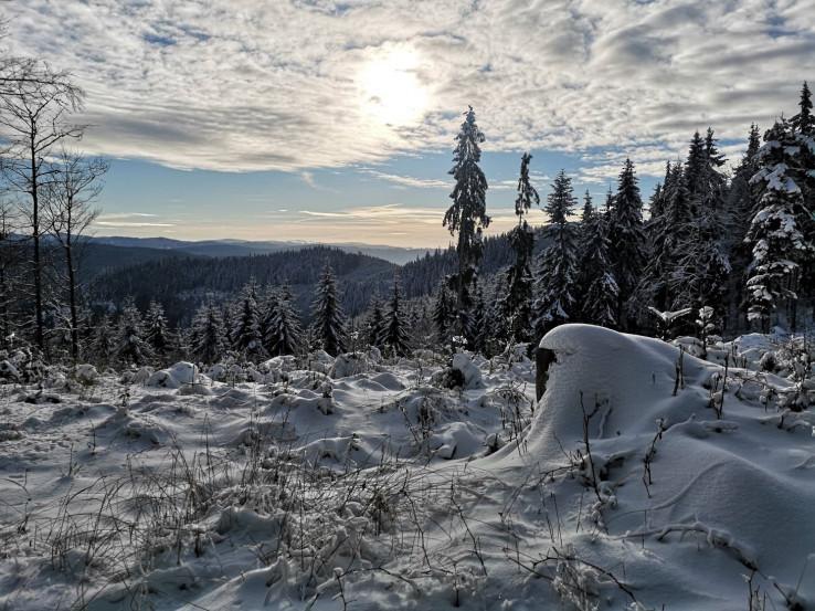 záblesk zimy