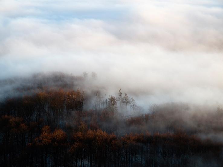 Karpaty v hmlách