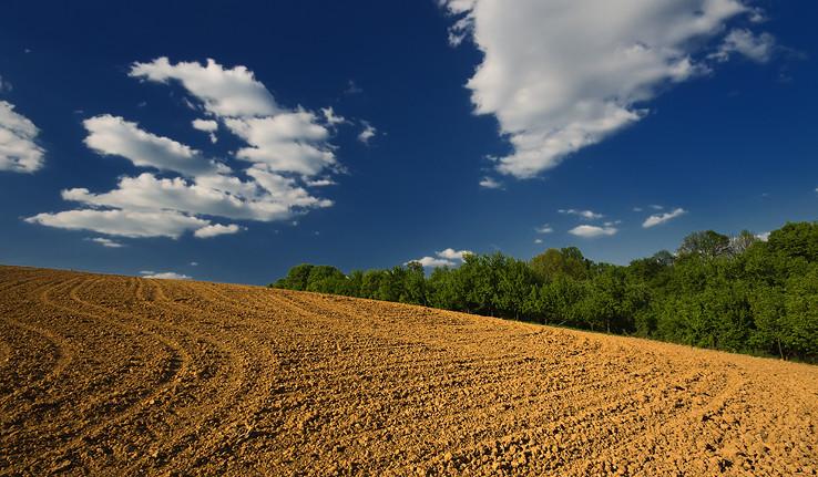 Poľnohospodárska
