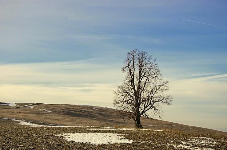 Zima na kopaniciach