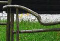 Za drevenou bránou