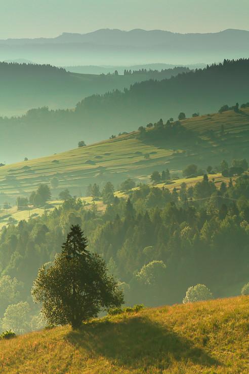 Ráno nad Osturňou