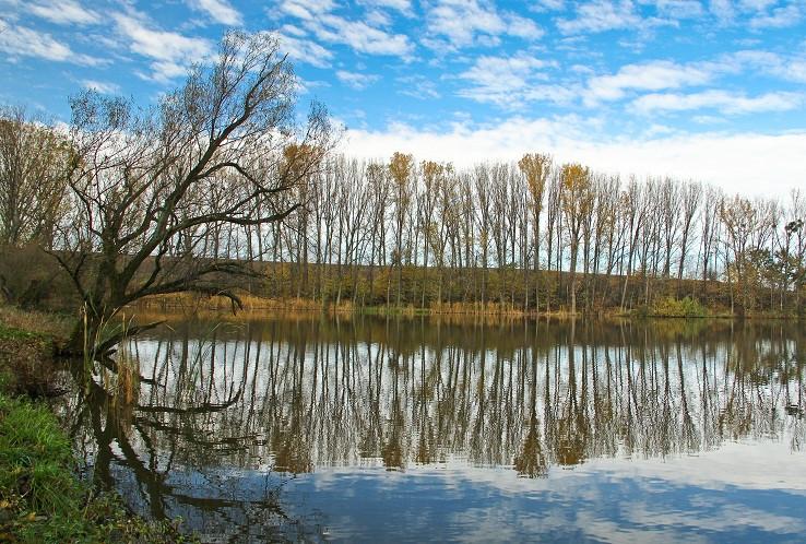Búdkovianské rybníky