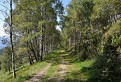 cesta z Volovca