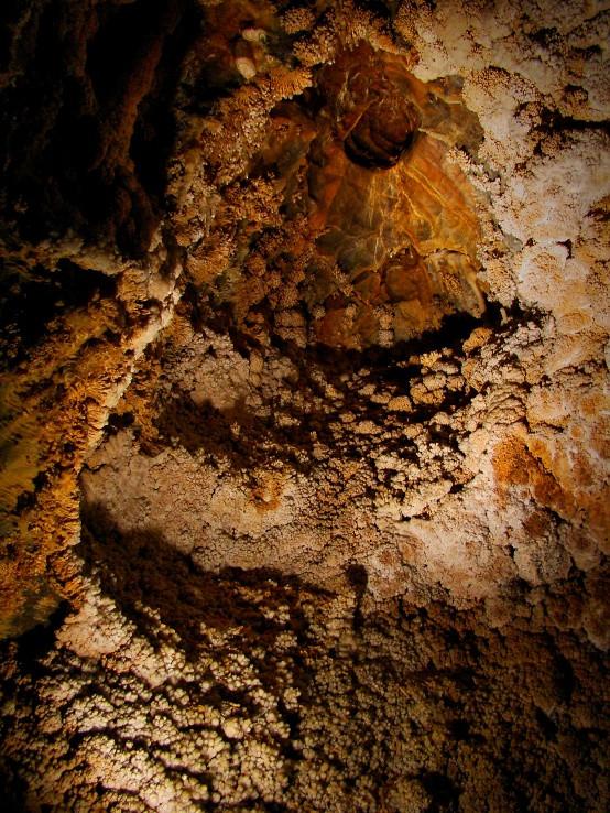 Jaskyňa Rákoczi - heliktity