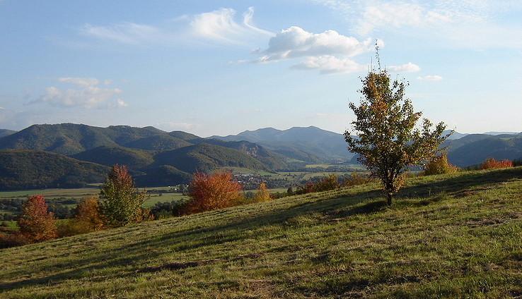 Na jesennej prechádzke ll.
