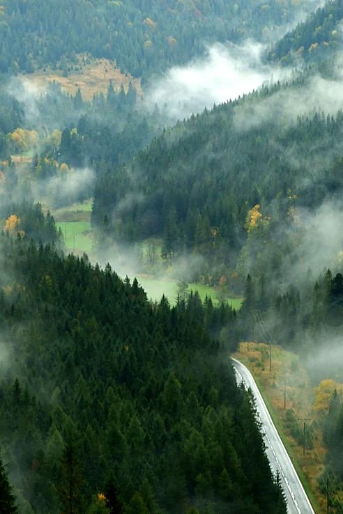 Podažďové hmly...