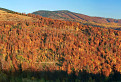Hlavný hrebeň Volovských vrchov
