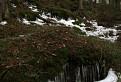 Ľadové diery - Mraznica